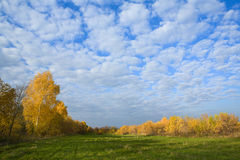 Sunny autumn day royalty free stock photography