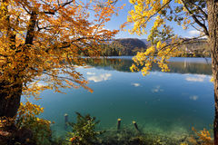 Sunny autumn day on Lake Bled, Slovenia. Sunny autumn day on Lake Bled in Slovenia with orange and golden leaves on trees, blue sky and turquoise water Royalty Free Stock Photos
