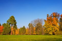 Sunny autumn day Stock Image