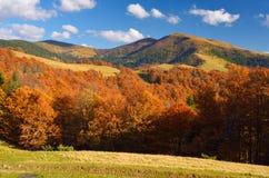 Sunny autumn day Royalty Free Stock Image