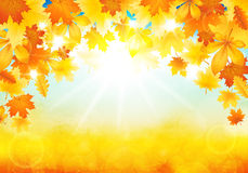 Sunny autumn day Royalty Free Stock Photos