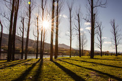 Sunny Autumn en parc Photographie stock libre de droits