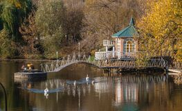 Free Sunny Autumn Evening On The Blue Lake Royalty Free Stock Images - 187226999