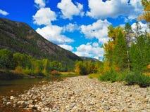 Sunny Autumn Fall Day vicino al fiume Immagine Stock Libera da Diritti
