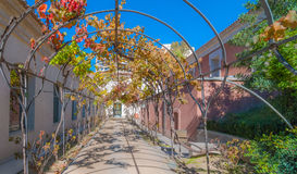 Sunny autumn garden walkway, featuring metal vine growing frame overhead. Royalty Free Stock Photo