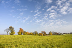 Sunny autumn landscape Stock Photos
