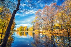 Sunny autumn in the park over lake. Sunny autumn landscape with blue sky over the lake Stock Image