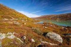 Sunny autumn landscape Norway Gamle Strynefjellsvegen.  Royalty Free Stock Image