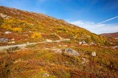 Sunny autumn landscape Norway Gamle Strynefjellsvegen Royalty Free Stock Photos