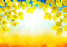 Sunny autumn landscape. Vector illustration of a sunny autumn landscape Stock Photos