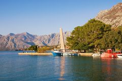 Sunny autumn Mediterranean landscape. Montenegro, Bay of Kotor, park in Kotor city royalty free stock image