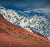 Sunny autumn morning in the Caucasus mountain Royalty Free Stock Image