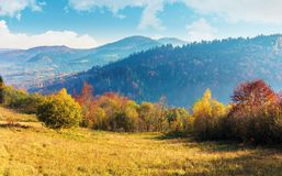 Sunny autumn morning in countryside. Fog in the distant valley. trees in fall foliage on the hillside. mountain range in the distance. bright weather with royalty free stock photography