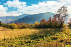 Sunny autumn morning in countryside. Fog in the distant valley. trees in fall foliage on the hillside. mountain range in the distance. bright weather with royalty free stock photos