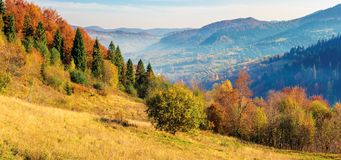 Sunny autumn panorama of  countryside. Fog in the distant valley. trees in fall foliage on the hillside. mountain range in the distance. bright weather with stock photos