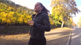 Sunny Autumn Running stock video footage