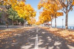 A sunny autumn street in Macedonia Royalty Free Stock Photo