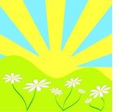 Sunny background stock illustration