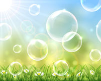 Sunny background with bubbles. Above the grass, illustration Royalty Free Stock Photos