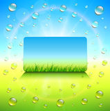 Sunny background. With vector grass and dews water drops Royalty Free Illustration