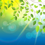 Sunny Background Vector Illustration naturel illustration stock
