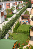 Sunny backyard garden. Small houses backyard pine-tree garden stock image