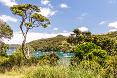 Sunny bay with resting yachts Royalty Free Stock Images