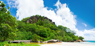 Sunny Beach. Black rock in green forest. Stock Photography