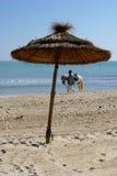 Sunny beach with horse. On Djerba Royalty Free Stock Photography
