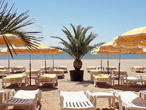 Sunny Beach met palm en Zonbedden Stock Afbeeldingen