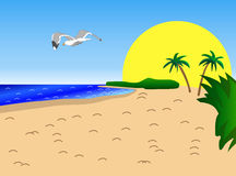 Sunny Beach, Palm Trees and Seagull. Sandy beach with huge sun, palm trees and seagull flying out over the ocean vector illustration