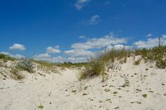 Sunny Beach with Sand Dunes and Blue Sky. Ocean. Ocean landscape with beach sea view, sand dune and grass, blue sky with clouds stock photo