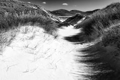 Sunny beach with sand dunes, tall grass and blue sky. Black & white royalty free stock photos