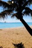 Sunny Beach y océano con el barco y la palmera de navegación imágenes de archivo libres de regalías