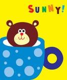 Sunny bear Stock Image