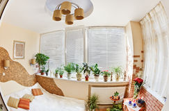 Sunny bedroom on balcony with Window and plants Stock Photo