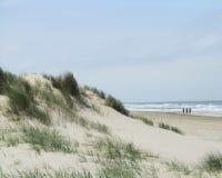Sunny Belgian Coast. Sand Dunes with Marram Grass on the Belgian Coast near the popular resort town of Blankenberge Stock Photo