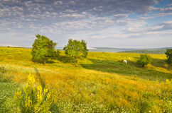 Sunny Blue Sky, pré et collines Images stock