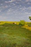 Sunny Blue Sky, prado e montes Fotografia de Stock Royalty Free