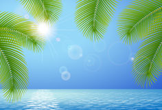 Sunny blue sky, sea and palm branches Royalty Free Stock Photo