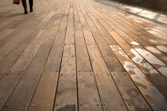 Sunny Boardwalk Pedestrian bagnato Fotografia Stock Libera da Diritti