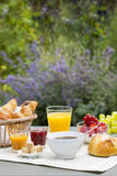 Sunny breakfast in garden Royalty Free Stock Images