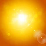 Sunny Brightness Stock Image