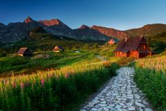 Sunny calm morning on mountain grassland with huts and stone path. royalty free stock images