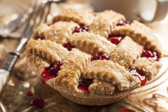 Sunny cherry pie Stock Images