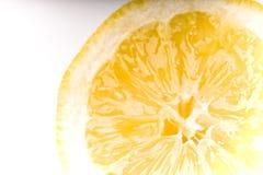 Sunny citrus Stock Photos