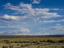 Sunny and Cloudly Day near the Mono Lake. Mono Lake neighborhood, California. Clouds in the blue sky, green grass and bushes under Stock Photography