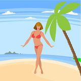 The sunny coast of exotic countries Royalty Free Stock Photo