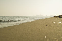 Sunny coast. Sunny sea coast beautiful sunrise Stock Images