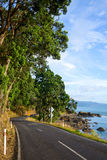 Sunny coastline road Royalty Free Stock Photo